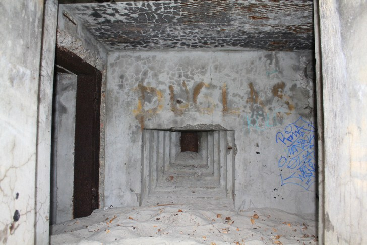 vulture-bunker-2