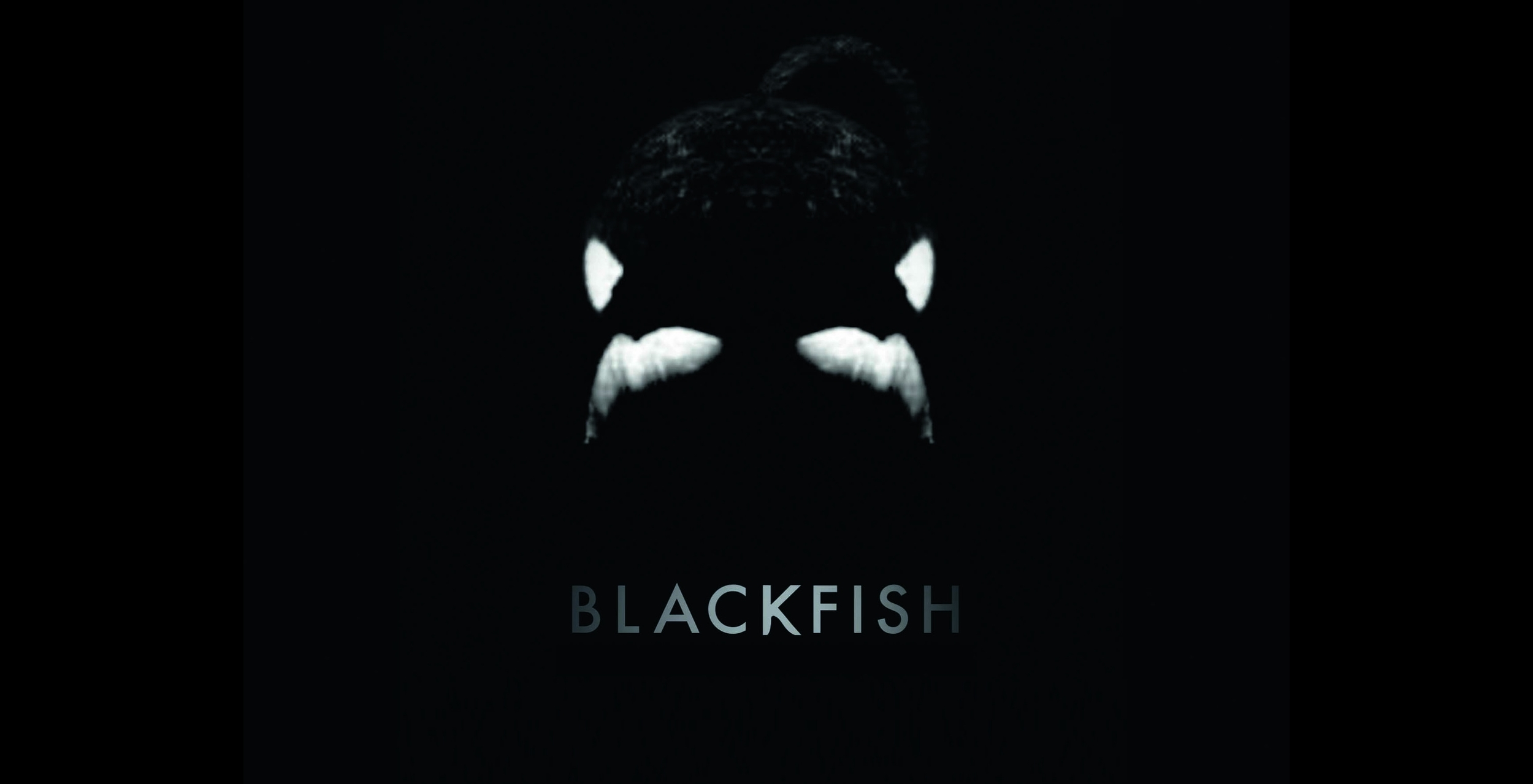 Blackfish movie cover
